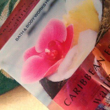 Wallflowers Home Fragrance Refills Wallflowers 2-pack Refills Caribbean Escape Fragrance Bulbs (1.6 Fl Oz. Total) uploaded by Lindsay N.