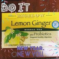 Bigelow Herb Tea Plus uploaded by Kristin L.