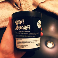 LUSH Aqua Marina Face and Body Cleanser uploaded by Ashley H.