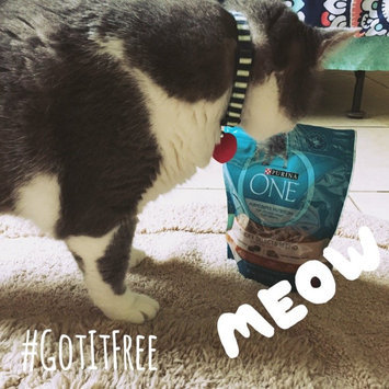 Photo of Purina ONE® Dry Food uploaded by Jasmine O.