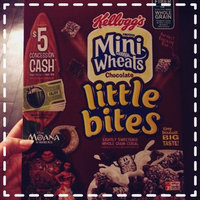 Kellogg's Frosted Mini Wheats Chocolate Little Bites Cereal uploaded by Kate K.