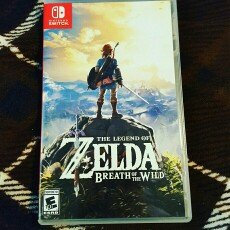 Photo of The Legend of Zelda: Breath of the Wild (Wii U) uploaded by Reba B.
