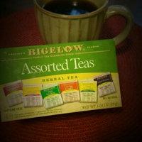 Bigelow Herbal Tea Assorted Teas - 18 CT uploaded by Michelle G.