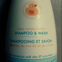 LiveClean® Baby Gentle Moisture Tearless Shampoo & Wash uploaded by Brittni G.