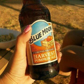 Photo of Blue Moon Seasonal Collection Harvest Pumpkin Ale uploaded by Jesica M.