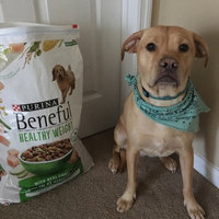 Purina PetCare Purina Dog Beneful Healthy Weight Dog Food - 3.5 lb. uploaded by Haley C.