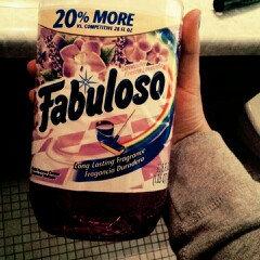 Fabuloso Multi-Purpose Cleaner uploaded by ImaMuchkinCatDuh ..