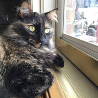 Friskies Cat Treat uploaded by Lisa H.