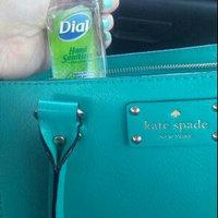 Dial Liquid Light Citrus Scent  Hand Sanitizer Antibacterial  2 Fl Oz Plastic Bottle uploaded by Debbie K.