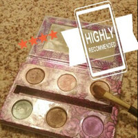 Urban Decay The Feminine Palette uploaded by Melissa C.