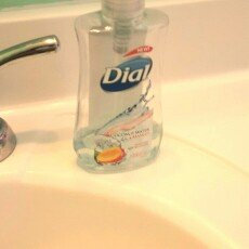 Photo of Dial Liquid Hand Soap, Coconut Water & Mango, 7.5 fl oz uploaded by Veronica N.