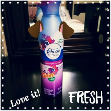 Photo of Air Effects Febreze® Air Effects Gain® Moonlight Breeze Air Freshener (2 Count, 19.4 oz) uploaded by Terrica K.