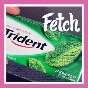Trident Spearmint Sugar Free Gum uploaded by Anya R.