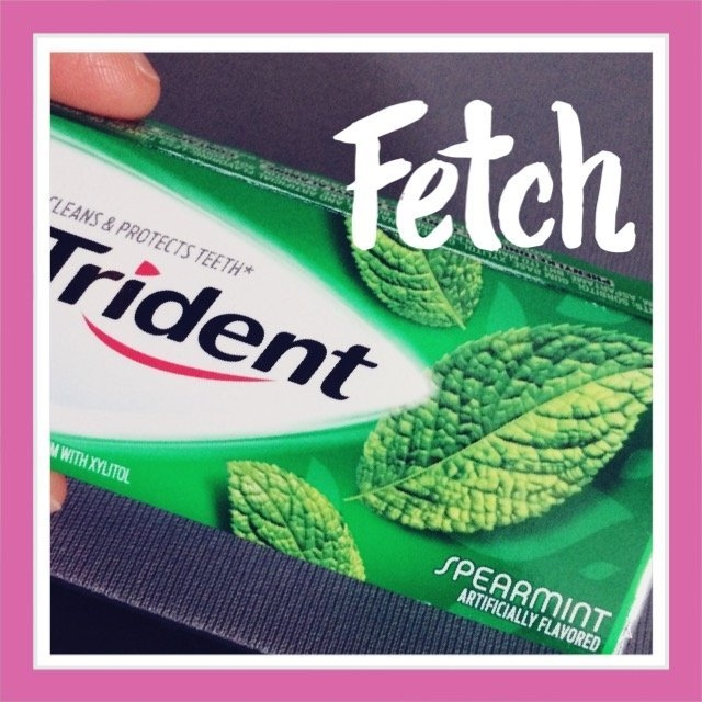 Trident Spearmint Sugar Free Gum uploaded by Anya R.