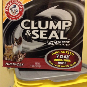 Photo of ARM & HAMMER™ Clump & Seal Complete Odor Sealing Clumping Litter Multi-Cat uploaded by Laurin Rae P.