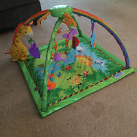Fisher-Price Melodies & Lights Deluxe Gym uploaded by Sarah O.