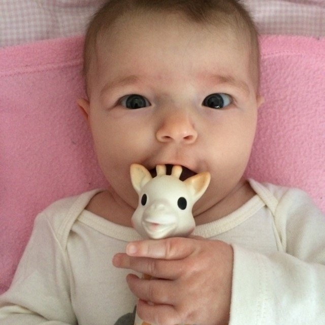 Vulli Sophie the Giraffe Teether uploaded by Teresa B.