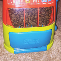 Outward Hound Lucky Dog Slots Dog Puzzle uploaded by Caitlin B.