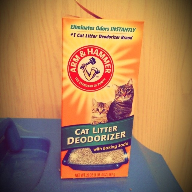 Arm & Hammer Cat Litter Deodorizer with Baking Soda uploaded by Maxine S.