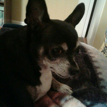 Photo of Beggin'® Littles Original With Bacon Dog Treats uploaded by Laurie L.