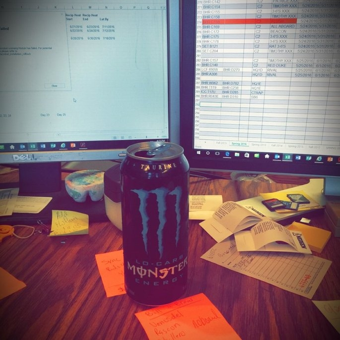 Monster Lo-Carb Energy Drink uploaded by Kimberly R.
