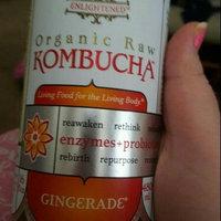 GT's Raw Organic Kombucha Gingerade uploaded by Lindsie S.