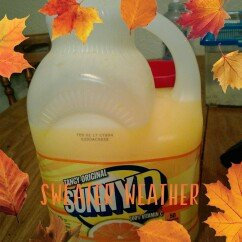 Photo of Sunny D Tangy Original uploaded by Ka H.
