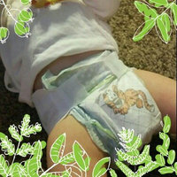Walgreens Well Beginnings Premium Diapers Jumbo 3 uploaded by Alicia M.