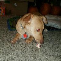 Purina Busy with Beggin' Twist'd Small/Medium Dog Treats 7 oz. Pouch uploaded by Angela B.