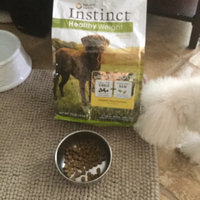 Nature's Variety Instinct Nature's VarietyA InstinctA Healthy Weight Grain Free Dog Food uploaded by Candy C.