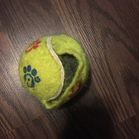 Toys R Us Tennis Ball Dog Toy uploaded by Danielle R.