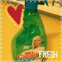 Mr. Clean with Gain Original Fresh Scent Multi-Surface Cleaner uploaded by Janel B.