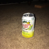 Canada Dry Sparkling Seltzer Water Lemon Lime - 12 PK uploaded by Anne G.