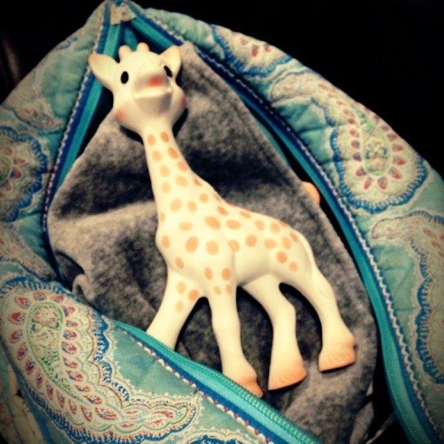 Vulli Sophie the Giraffe Teether uploaded by Desiree S.