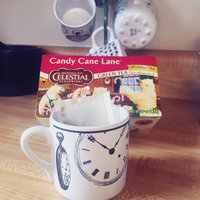 Celestial Seasonings® Candy Cane Lane® Holiday Green Tea Decaffeinated uploaded by Alexandria D.