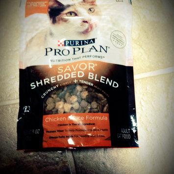 Photo of Purina Pro Plan Savor Adult Chicken & Rice Formula Cat Food 3.5 lb. Bag uploaded by Alyssa S.