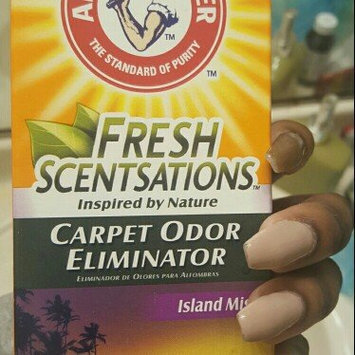 Photo of ARM & HAMMER™ Fresh Scentsations™ Carpet Odor Eliminator  Island Mist uploaded by Nj W.
