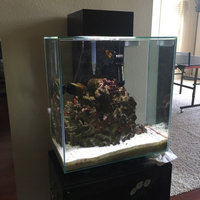 Hagen Fluval Edge Aquarium with LED Light, White uploaded by Katie K.