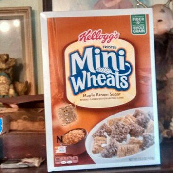 Kellogg's® Frosted Mini-Wheats® Original Cereal 32 oz. Box uploaded by thomas j.