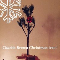 A Charlie Brown Christmas(tm) (Paperback) uploaded by Bethany H.