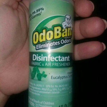 Photo of OdoBan 4 oz. Eucalyptus Disinfectant Fabric and Air Freshener uploaded by Michelle R.