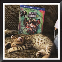 Suicide Squad [3d] [blu-ray/dvd] uploaded by Andrew M.