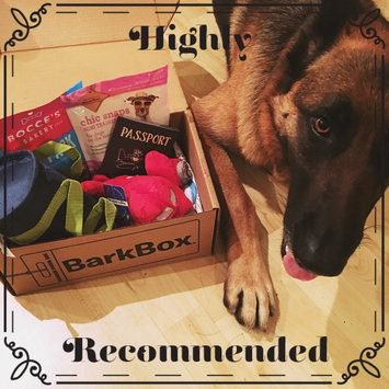 Photo of BarkBox uploaded by Lexi M.