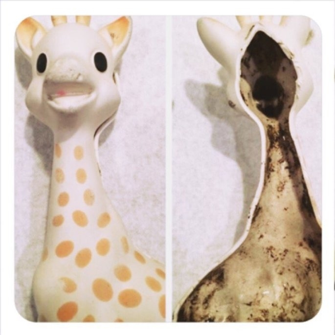 Vulli Sophie the Giraffe Teether uploaded by Karolyn M.