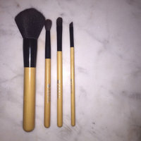 Earth Therapeutics Pure fx Cosmetic Brush Set (Black) uploaded by Johanna M.