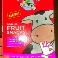 Horizon Bunch o' Berries Fruit Snacks uploaded by Amanda L.