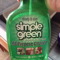 Simple Green 13002 16 oz All Purpose Cleaner uploaded by Renee R.
