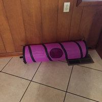 SmartyKat Crackle Chute Collapsible Tunnel Toy uploaded by Brittany C.