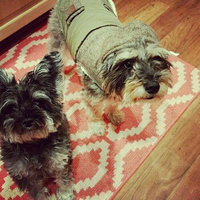 Freshpet® SELECT CHUNKY BEEF WITH VEGETABLES & BROWN RICE DOG FOOD RECIPE uploaded by Violetta D.