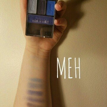 Wet n Wild Color Icon Eyeshadow Palette uploaded by Robin C.